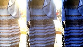 Download Why millions can't see eye to eye in dress color debate Video