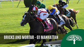 Download Bricks and Mortar - 2019 - The Manhattan Stakes Video