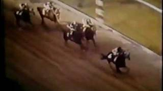 Download Secretariat - Preakness Stakes 1973 Video