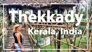 Download Kerala, India Thekkady: Monkeys, Elephants, Shopping & Treehouse! Video