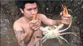 Download Primitive Technology with Survival Skills looking Crab and Frog for food Video