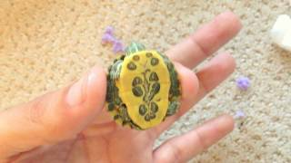 Download NEW! Rare Cute Baby Turtles Video
