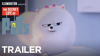 Download The Secret Life Of Pets - Trailer #3 (HD) - Illumination Video