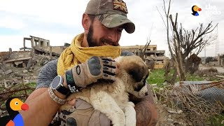 Download Soldier Saves Puppy Then Realizes He Can't Live Without Her | The Dodo Video