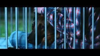 Download Max (2015) - Trailer Video