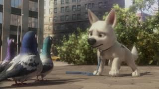 Download Bolt - Trailer Video