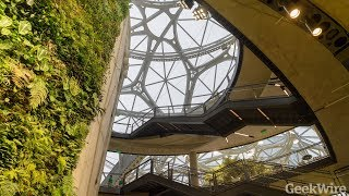 Download First look inside the Amazon Spheres Video
