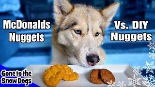 Download DIY Dog Chicken Nuggets Vs. McDonald Chicken Nuggets Video