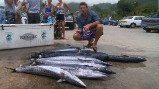 Download Deep Sea Fishing, The Cook Islands, Travel Video Guide Video