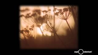 Download Paul Clipson I Cinema Artist in Residence I Exploratorium Video