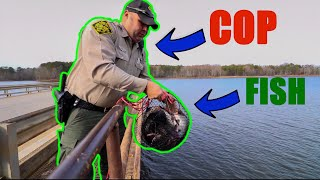 Download Called The COPS While Magnet Fishing (Saved Fish) Video