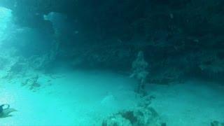 Download Underwater Hindu Temple dive in Mauritius 2013-10-16 Video