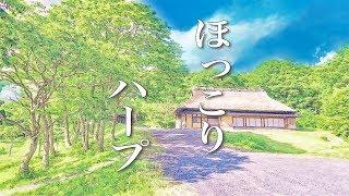 Download アニメサントラ風【心が落ち着く音楽】~美しいハープの音色で癒されるヒーリングミュージック ~癒しの時間や睡眠用、瞑想用などにどうぞ~ Video