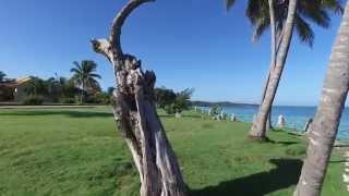 Download Cuban Vacation back at Brisas Guardalavaca Video
