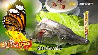 Download 逆境重生 帝王鱘龍魚 第199集《進擊的台灣》全集 Video