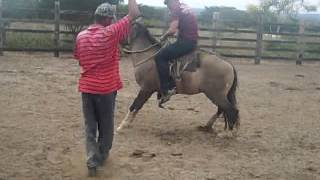 Download Montaria de Cavalo bravo : Josima Bigode Video