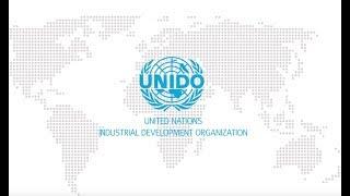Download The UnitedNations Industrial Development Organization Video