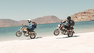 Download Throttle Out FULL EPISODE - 1,000 Miles in Baja on Honda Monkeys Video