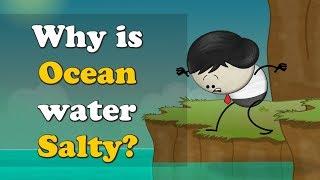 Download Why is Ocean water Salty? | #aumsum #kids #ocean #water #salty Video