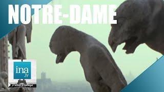 Download Les secrets et les coulisses de Notre-Dame | Archive INA Video