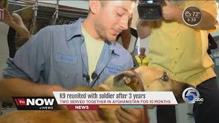Download K9, soldier who served together in Afghanistan reunited at Cleveland airport Video