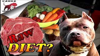 Download Raw Dog Food Diet for Pitbulls and Bullys ( How to get started) Let's go meat shopping! Video