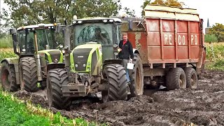 Download Harvesting mais in the mud | Claas Jaguar | Axion | Xerion | New Holland T7070 | NL. Video
