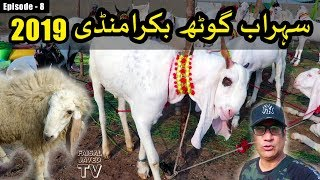 Download BAKRA MANDI SOHRAB GOTH 2019 KARACHI | Episode – 8 | Video in URDU/HINDI Video