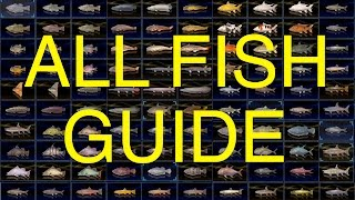 Download Final Fantasy XV: All Fish Guide (100% Complete) Video