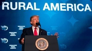 Download Trump blames OPEC for artificially high oil prices Video