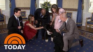 Download It's Bo And Sunny! The Obama Family Dogs Join The TODAY White House Tour   TODAY Video