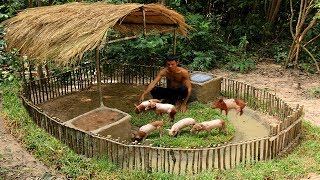 Download Build Mini Swimming Pool For Wild Pigs Around Build Wild Boar Pigs House Video