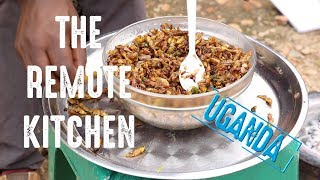 Download The Remote Kitchen Ep 4 | Uganda - Fried grasshoppers | WaterAid Video