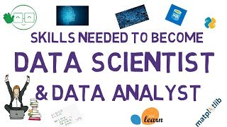 Download Skills Needed For Data Scientist and Data Analyst Video