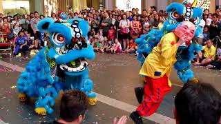 Download World Dragon & Lion Dance 2018(Msia) Double Lion-Brilliant 世界龙狮节(大马站)蒲種卓越《雙獅起舞》2/2 Video