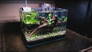 Download 3 gallon nano setup Video