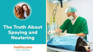 Download Dr. Becker: The Truth About Spaying and Neutering Video