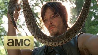 Download The Walking Dead Season 4 Returns Video