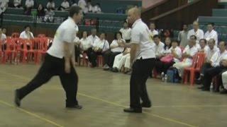Download Huang Sheng Shyan taiji forum Video