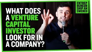 Download What Does a Venture Capital Investor Look for in a Company? Video