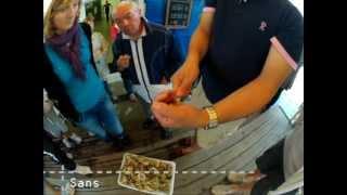 Download J'ai testé pour vous... les huîtres Lusseau à Bouin - Vendée des îles Video
