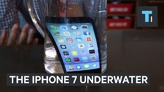 Download Using the iPhone 7 underwater Video