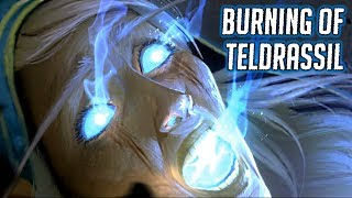 Download WOW BFA: The Burning of Teldrassil (Alliance) - Tyrande Saves Malfurion Video