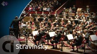 Download Stravinsky: Petroesjka / Petrouchka Concertgebouw Orchestra Live concert HD Video