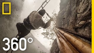 Download 360° Dangerous Honey Hunting (4K) | Explorer | National Geographic Video