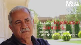 Download Légalisation du cannabis thérapeutique au Liban : qu'en pense-t-on à Yammouné ? Video