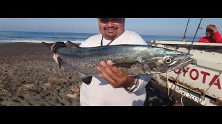 Download BUEN DIA DE PESCA Video
