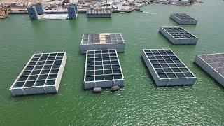 Download הקמת נמל המפרץ Video