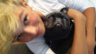 Download Dog Meets Owner After Long Time *EMOTIONAL* (TRY NOT TO CRY) Video