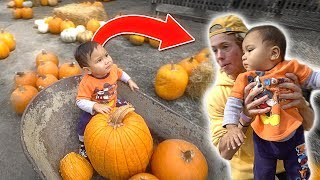 Download Pumpkin Shopping with Tanner Fox! Video